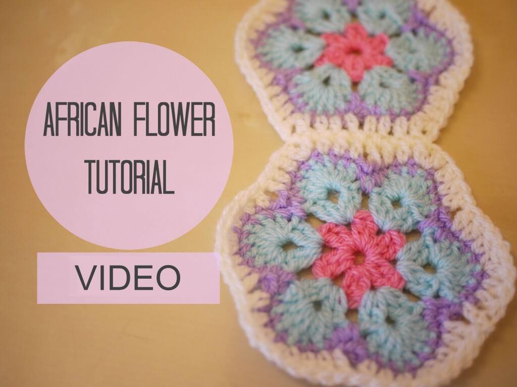 african_flower_video